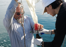 Sampling with plankton net (photo: V. Flander Putrle)