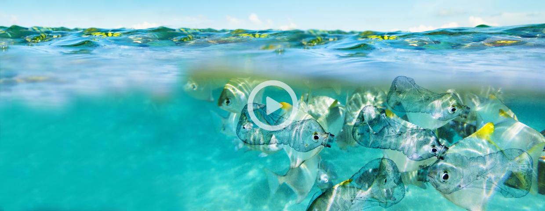 VIDEO: Mikroplastika v Tržaškem zalivu