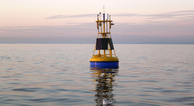 Boja Vida - Aktualni podatki o morju