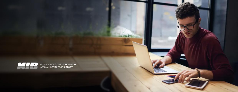 NIB zagotavlja nemoteno poslovanje z delom od doma