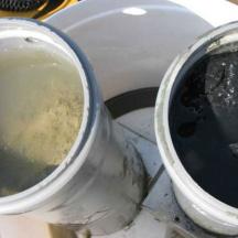 Vpliv ribogojnic na meiofavno - razlika v izgledu sedimenta pod ribogojnico v poletnih mesecih (črn pod kletkami, zelenkast 100 m stran od gojitvenih kletk)