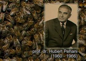 Prof. dr. Hubert Pehani (foto: Arhiv NIB)