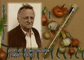 Prof. dr. Franc Sušnik (foto: Arhiv NIB)