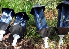 Cross-vane panel traps for beetles. (photo: M. Zorović)