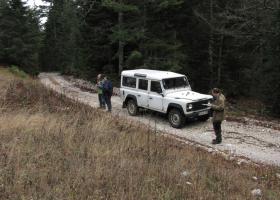 Prvi popis gozdnih sov v Bosni in Hercegovini na Igmanu. (Foto: Dejan Bordjan)